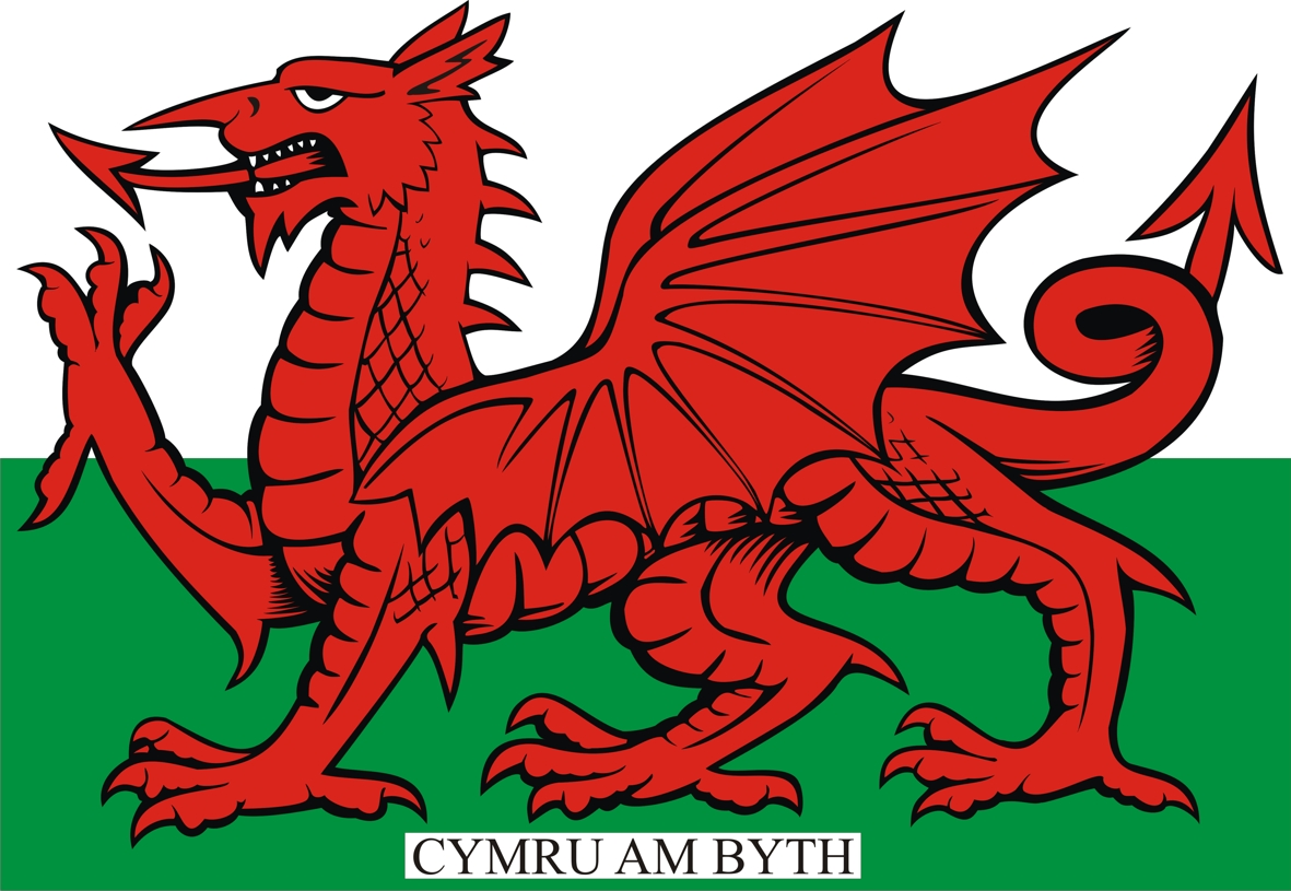 welsh flag facts